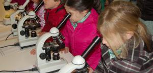 primaria-microscopis-3