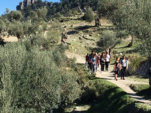 Noti excursió castell Alaró 2n ESO 4
